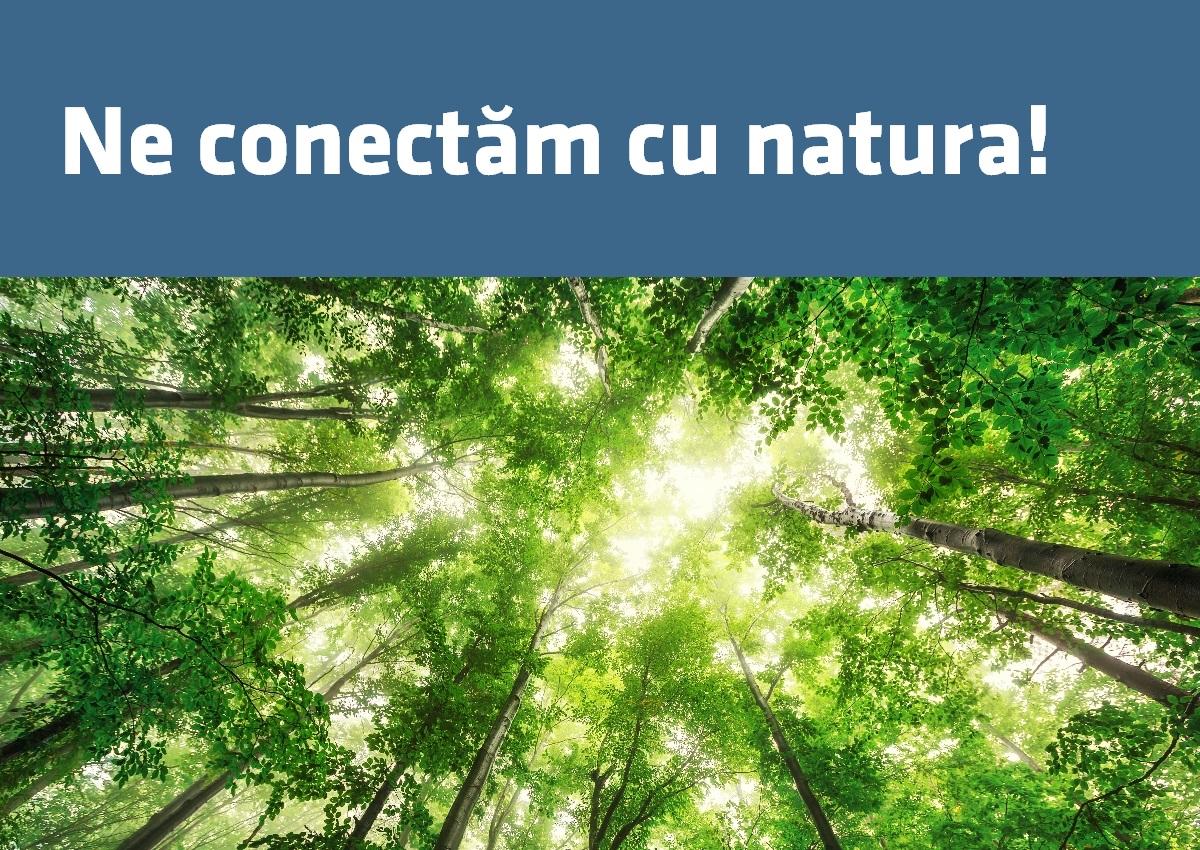 Certificare Amprenta de Carbon